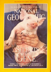 National Geographic Volume 196, No. 4 October 1999