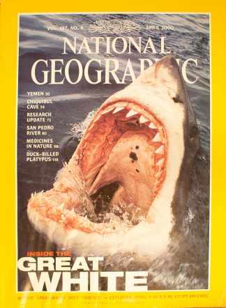 """National Geographic Vol 197, No.4, April 2000, """"Inside The Great White"""""""