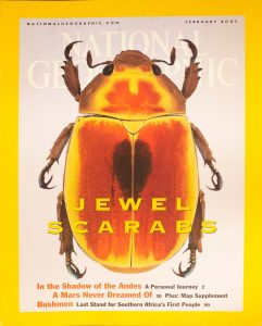 """National Geographic, February 2001, """"JEWEL SCARABS"""""""