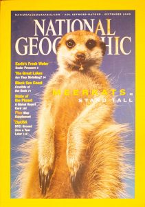 "National Geographic, September 2002, ""MEERKATS STAND TALL"""