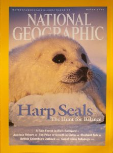 """National Geographic, March 2004, """"Harp Seals The Hunt for Balance"""""""