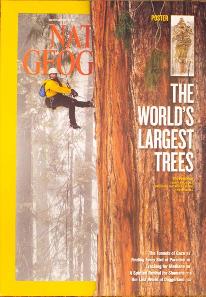 """National Geographic, December 2012, """"THE WORLD'S LARGEST TREES"""""""