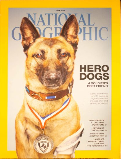 "National Geographic, JUNE 2014, ""HERO DOGS; A SOLDIER'S BEST FRIEND"""