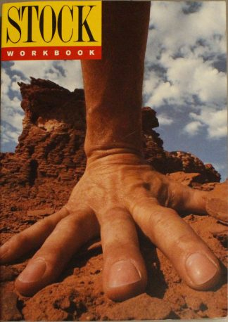 Stock Workbook (Workbook 11)